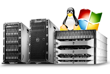 Dedicated Server Rental